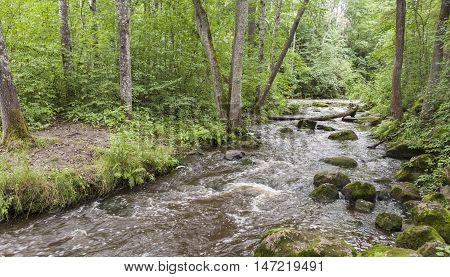 The Nukarinkoski rapids in the River Vantaanjoki in Finland