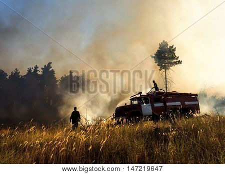 Smoldering remains of a green forest with a fireman spraying water