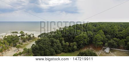 Aerial view of maritime forest in South Carolina