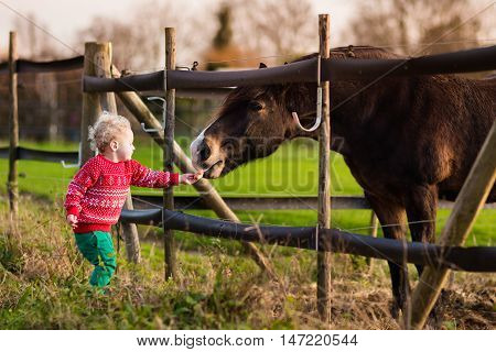 Family on a farm in autumn. Kids feed a horse. Outdoor fun children. Toddler boy playing with pets. Child feeding animal on a ranch on cold fall day.