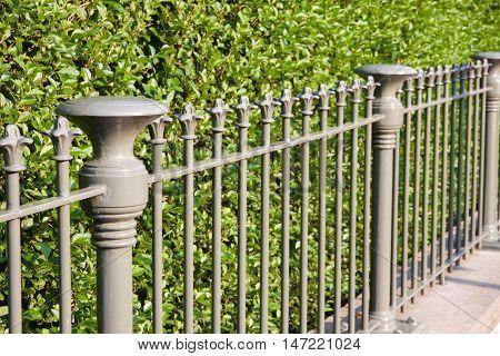Fence in De Haan Belgium in front of a green hedge