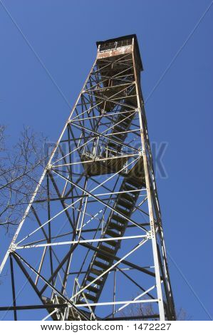 Forest Lookout Tower