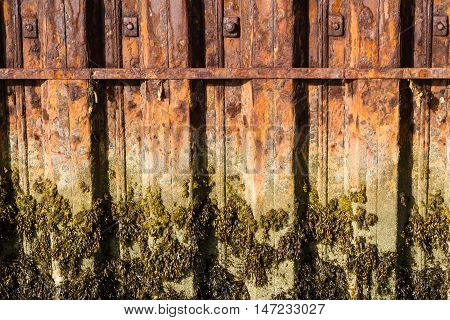 Rusting iron interlocked girders that form part of harbour harbour wall water mark with seaweed.