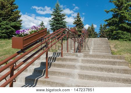 stairs to the hill with the railings and flowers