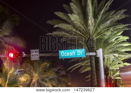 Ocean drive sign in Miami by night with palm tree