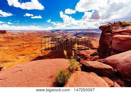 Green River Overlook, Canyonlands, National Park, Utah, Usa