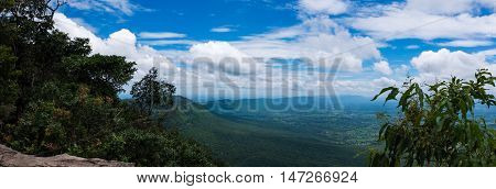Panorama of colorful landscape the summer in the daytime. Fresh evergreen forest nature against beautiful blue sky and cloudy over tranquil nature. Outdoors.