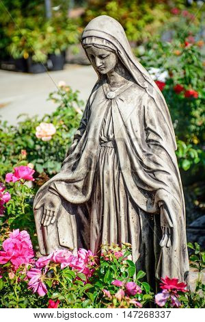 Mary Statue in the Garden with Flowers
