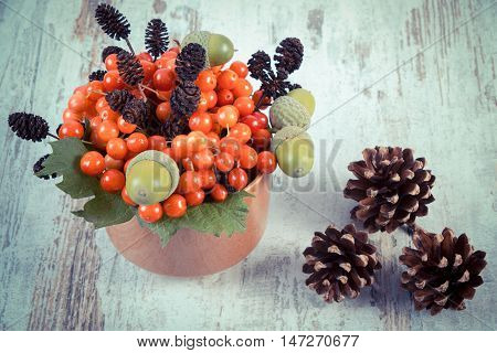 Vintage Photo, Red Viburnum With Alder Cone, Acorns And Pine Cones On Rustic Wooden Background