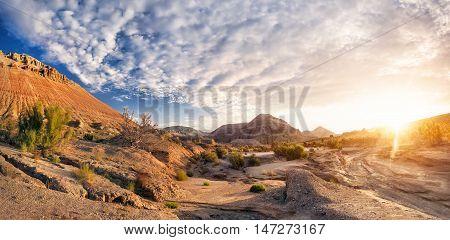 Sunrise In The Desert Mountains