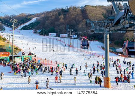 SoulKorea-Jan 42016: Skier both Koreans and foreigners to come skiing at Vivaldi Park Ski Resort on vacation in the winter every year.