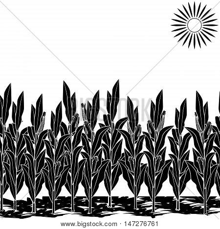silhouette lawn with corn on a white background