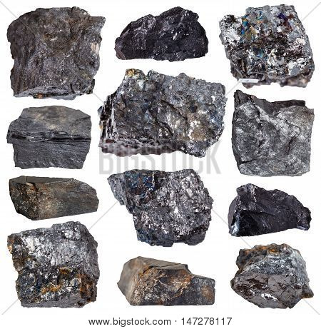Collection From Specimens Of Various Coal Minerals