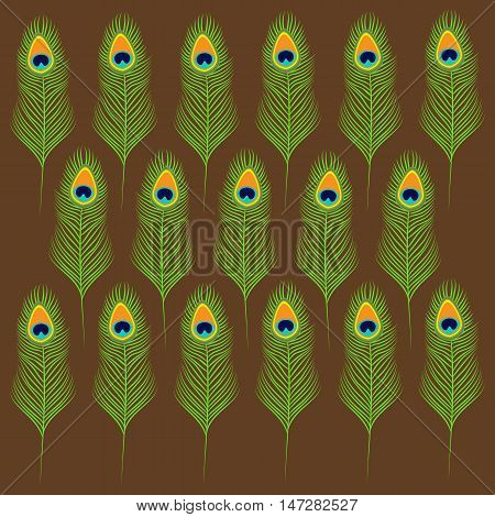 Peacock feather set collection. Exotic tropical bird colorful tail. Brown background. Flat design. Vector illustration