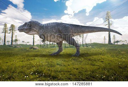 3D rendering of Tyrannosaurus Rex in a open field.