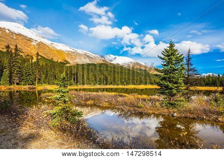The concept of eco-tourism and active tourism. The boggy valley in the Rocky Mountains of Canada