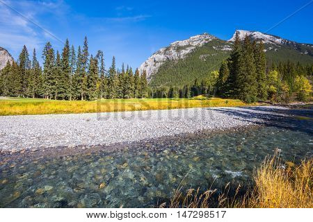 Sunny autumn day in the Canadian Rockies. Dry creek in a mountain valley Banff park