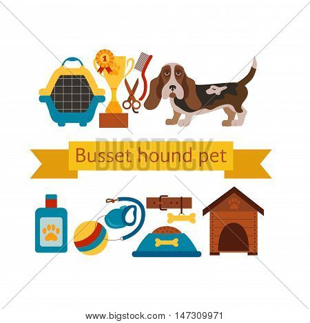 basset hound dog infografic with dog care isolated elements. basset hound dog training  poster vector illustration. Colorful basset hound dog infografic concept. Puppy basset hound dog care concept