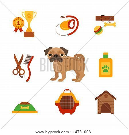Pug dog infografic concept with dog care isolated elements. Pug dog training  cartoon poster vector illustration. Colorful cartoon pug dog infografic icons concept. Puppy pug dog care concept