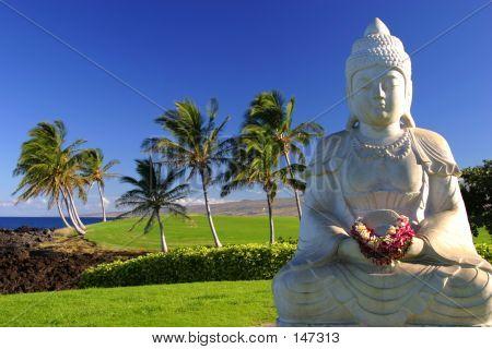 Buda en el paraíso