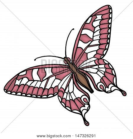 butterfly vector isolated icons single, spots, stripes, vector, white, wing, yellow