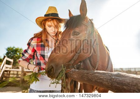 Beautiful redhead young woman cowgirl taking care and givivn food to horse