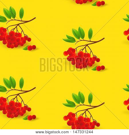 Seamless pattern with rowan. Autumn background. Vector illustration with bunch of rowan.