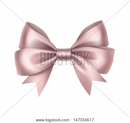 Vector Shiny Light Pink Satin Gift Bow Close up Isolated on White Background
