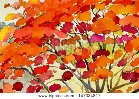 Abstract watercolor landscape original painting redorange color of peacock flower and sky background