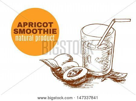 Apricot smoothie vector concept. Menu element for cafe or restaurant with energetic fresh drink made in sketch style. Fresh juice for healthy life.