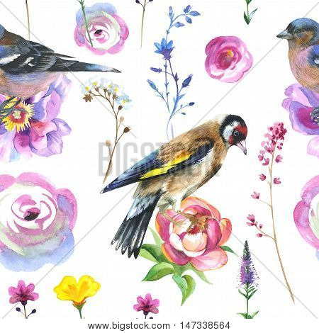 Sky bird sparrow in a wildlife pattern by watercolor style isolated. Wild freedom, bird with a flying wings. Aquarelle bird could be used for background, texture, pattern, frame, border or tattoo.