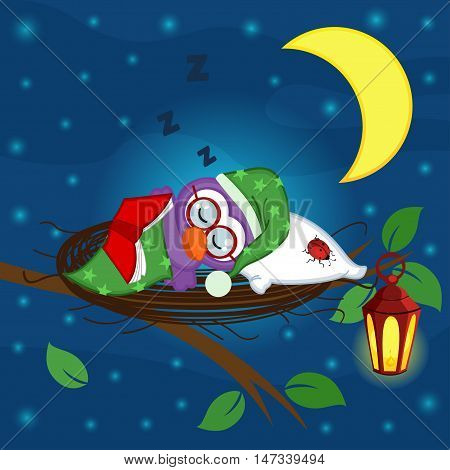 bird sleeps in a nest - vector illustration, eps