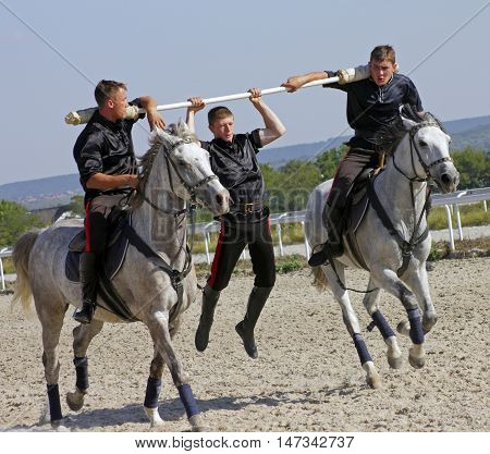 Bold mans riding on a grey horse and perform trick.