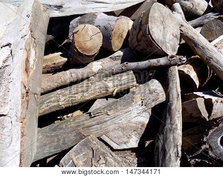 Pile of wood logs after wood exploitation