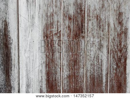 Wooden background texture : copy space for text
