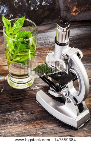 microscope research science scientist study analysis analyzing biology ecology organic plant