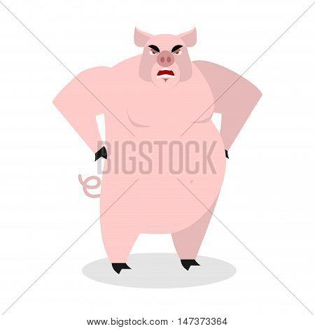 Angry Pig. Aggressive Wild Boar.  Big Boar. Grumpy Farm Animal.