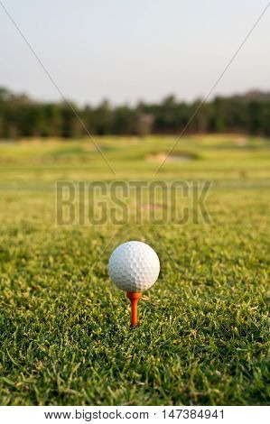Golf ball on a tee against the golf course. Close up at golf ball and tee