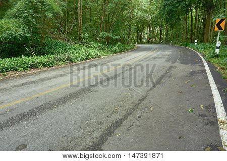 Asphalt road in the tropical rain forest, Chong Yen at Mea-Wong National Park,Thailand. Tropical rain-forest in asia