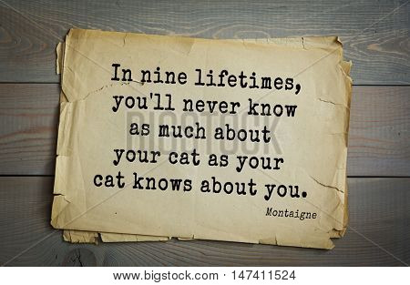 TOP-100. French writer and philosopher Michel de Montaigne quote.In nine lifetimes, you'll never know as much about your cat as your cat knows about you.
