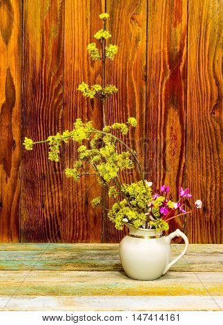 flowering branch of dogwood and cyclamen flowers in a white jug