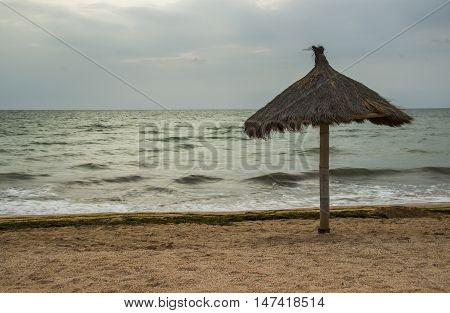 morning sea beach with sunshades and without people