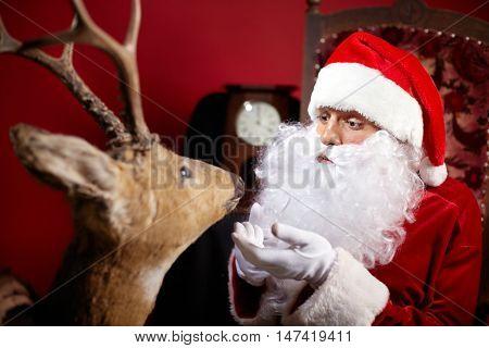 Santa Claus talking to reindeer