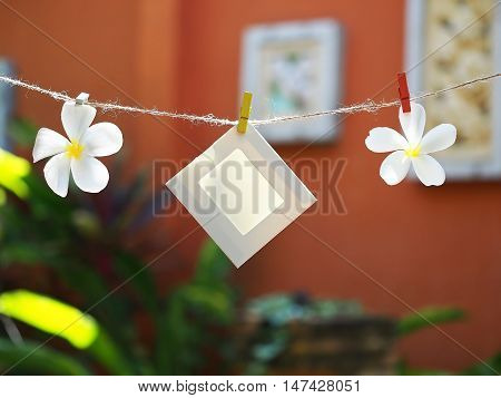 Photo Frames on Rope with flower. background the nature soft focus