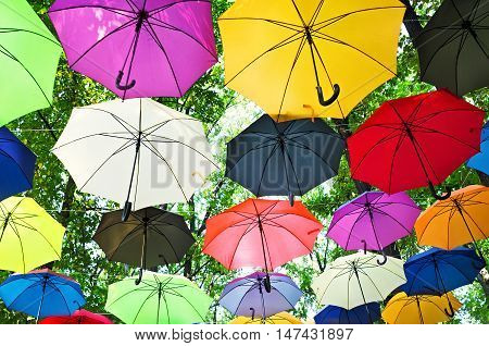 Many colorful umbrellas strung across the street on natural background under the branches of trees in the green park.