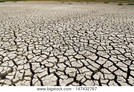 dry earth, drought land as background