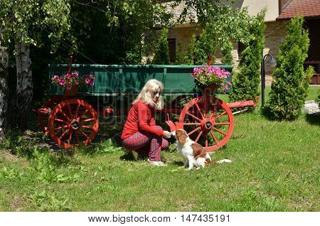 Lady playing with her dog in garden in front of old-fashioned wooden green wagon with red wheels