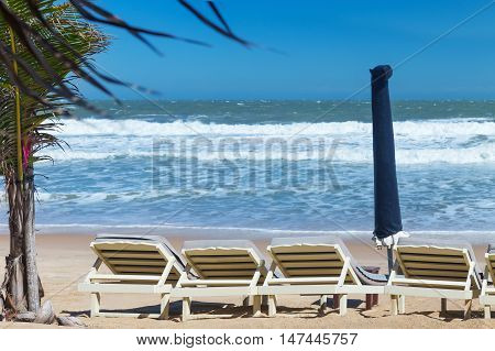 Summer Beach Sun Chairs Lounger Near Tropical Sea