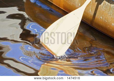 Oar In The Water