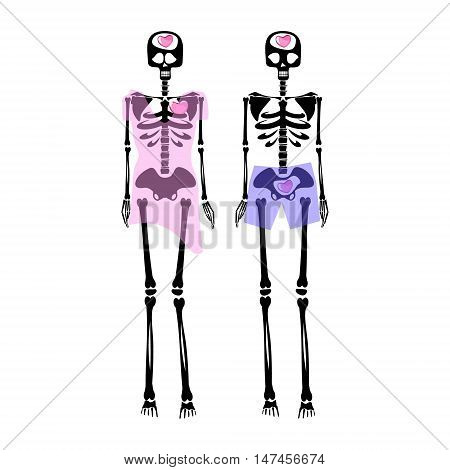 couple of skeletons with hearts. Flat illustration. Vector